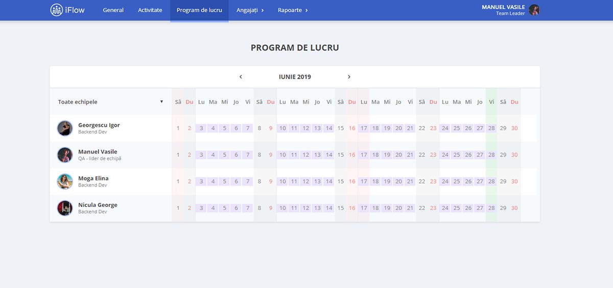 Program de lucru Lider de echipa iFlow